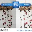 FB-project365-240