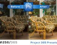 FB-project365-256